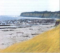 Küstenschutz durch Buhnenbau