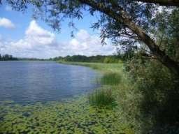 Der Inselsee Güstrow - NSG und GGB