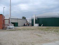 Gasdicht abgedeckte Fermenter und Nachgärbehälter landwirtschaftlicher Biogasanlagen, Einsatzstoffe: nachwachsende Rohstoffe